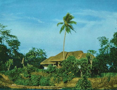 Wardrop family home in Poligolo, Rigo, PNG