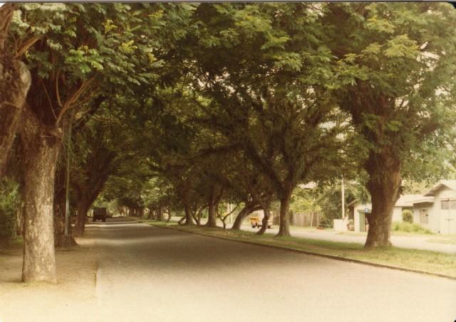 07 - Malaguna_Road